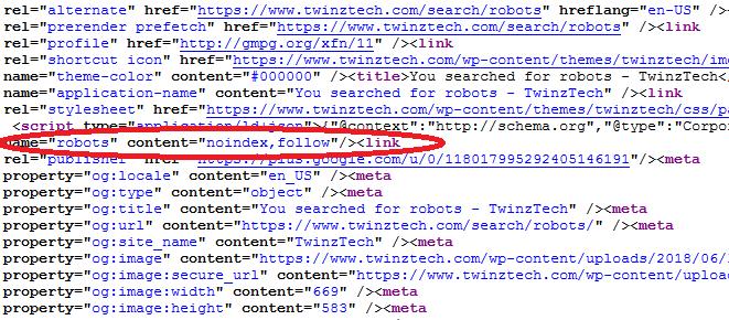 Robots Meta Tag