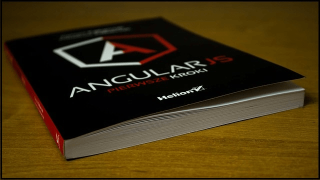 Javascript Angular js