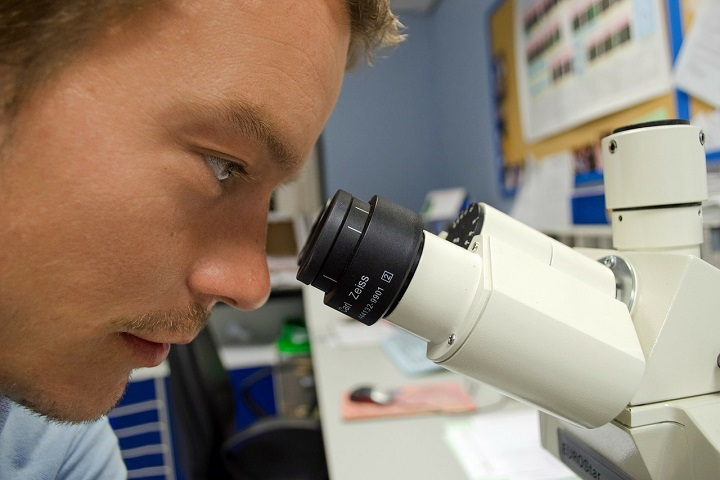 The Microscope Buying Guide – Pick the Best One For Your Team
