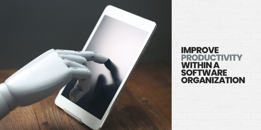 Improve Productivity within a Software Organization