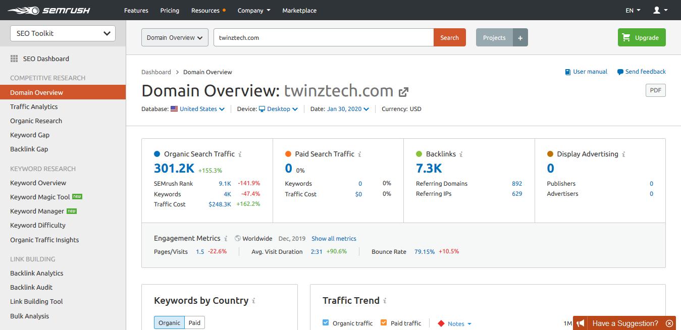 SEMrush TwinzTech Domain Overview Report