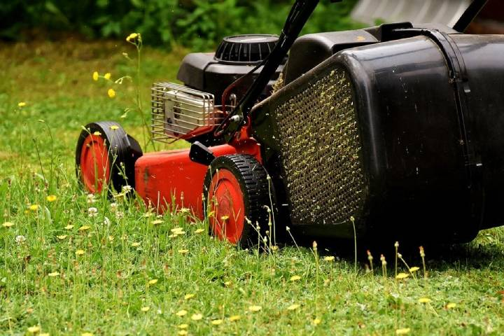 Top Advances in Lawn Care Technology